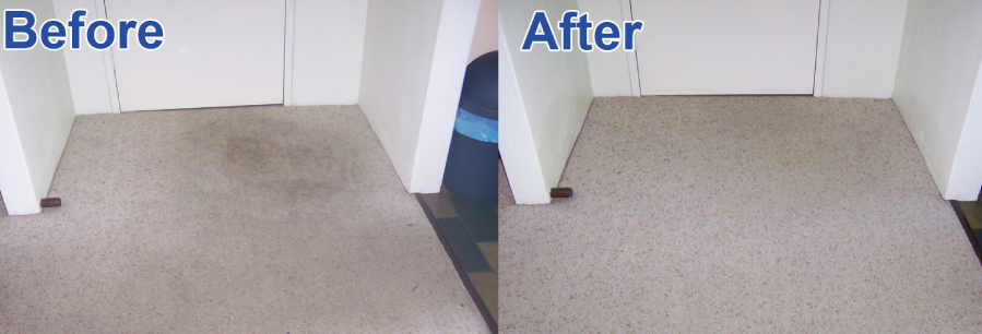 Industrial level cabin sanitation results before and after